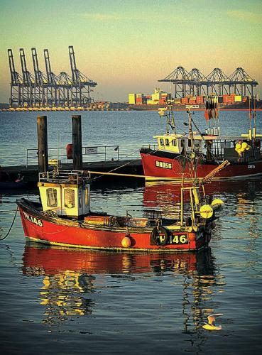 Golden hour at Harwich - Tony Argent