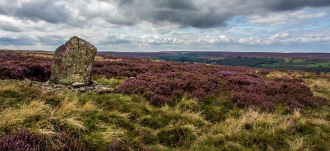 Waymarker Danby Ridge - Jan Cross