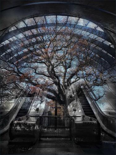 Post Apocalypse - Chrissie Alexander