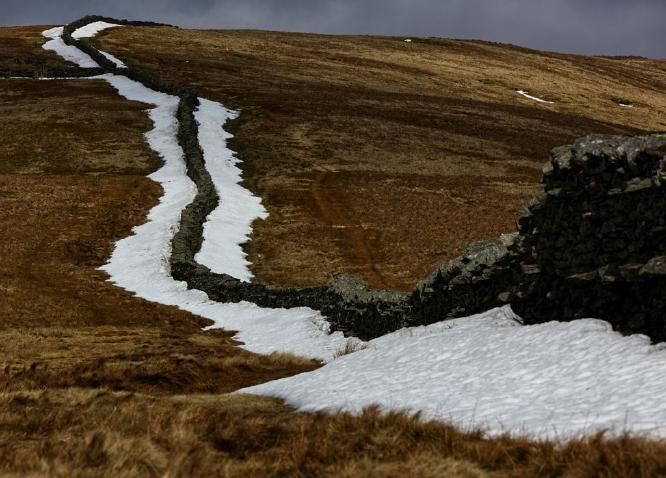 Remnants of the Snow - Steve Robinson