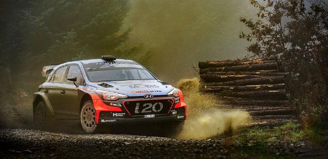 Racing Through The Forest On A Wet Foggy Morn - Shane Leach