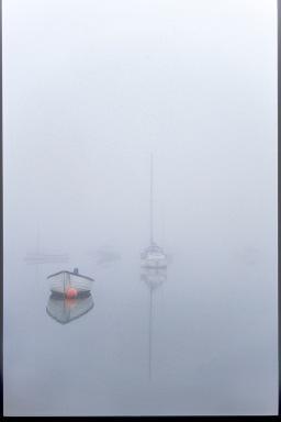 Misty Morning - Nancy Shephard
