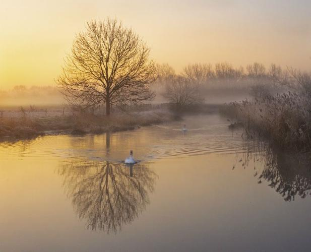 Wintry Dawn on the Stour - Mary Battye