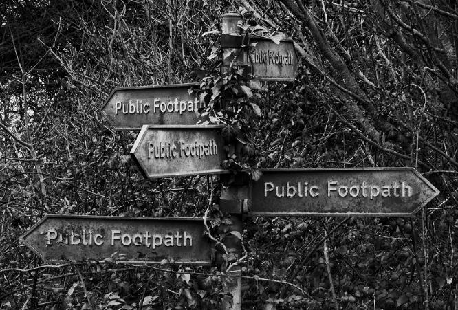 Which way - David Banks