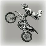 Tony Argent - Gymnastics with a Motorcycle