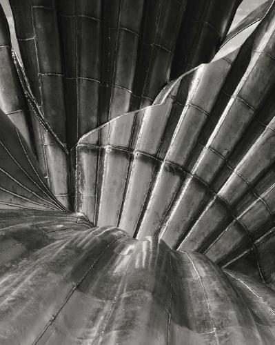 Seashell - Peter Pangbourne