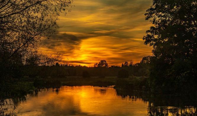 Golden Hour - Jan Cross