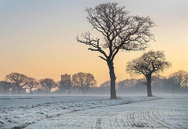 Frosty Morning in Great Holland - Colin Brett