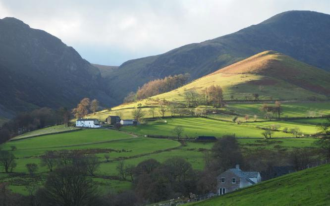 Borrowdale Farms - Alison Scott