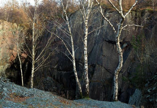 Hodge Close Quarry - Alison Scott