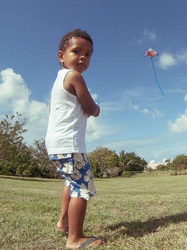 Kite Flyer - Colin Dando