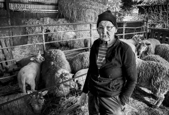 Kitty Ireland - Still Farming at 80 - Colin Westgate