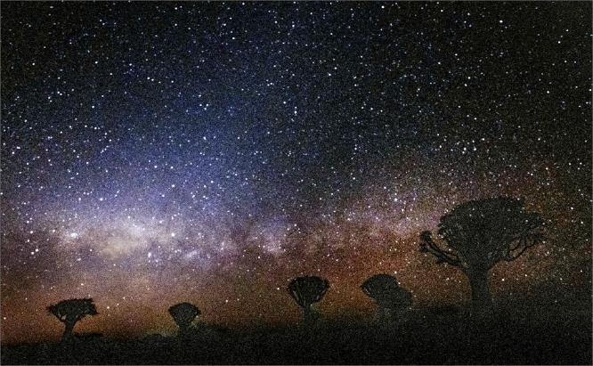 Milky Way & Quiver Trees Namibia - Colin Westgate