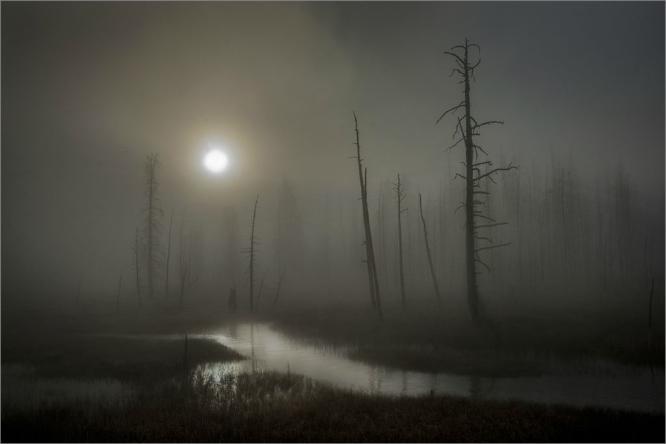 Tangle Creek - Colin Westgate