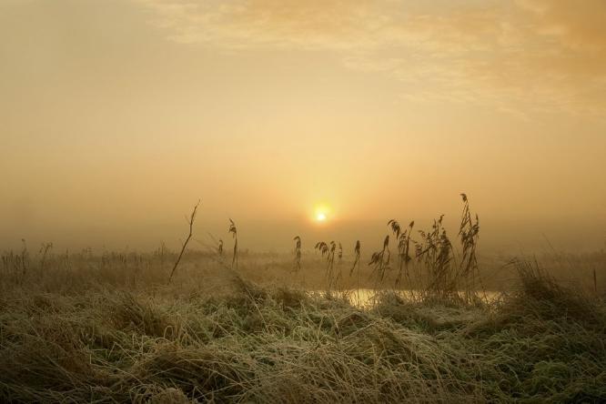 Winter Sunrise Mersea Island - 2 - Colin Westgate