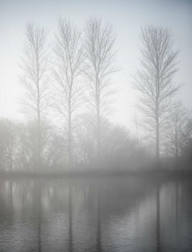 Early Morning Mist - David Cross