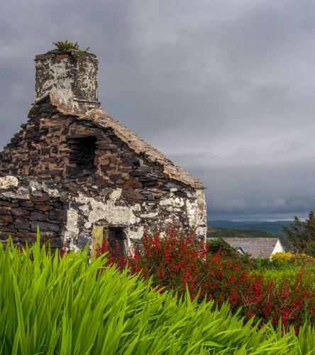 Easdale Derelict Cottage - Jan Cross