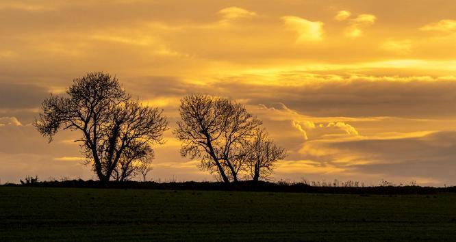 Mersea sky ii - Jan Cross