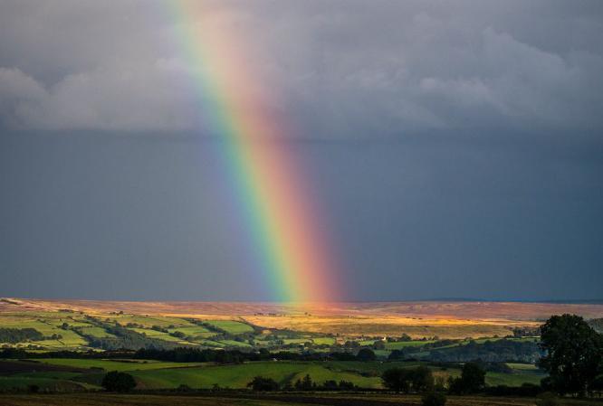 Rainbow at Dusk - Jan Cross