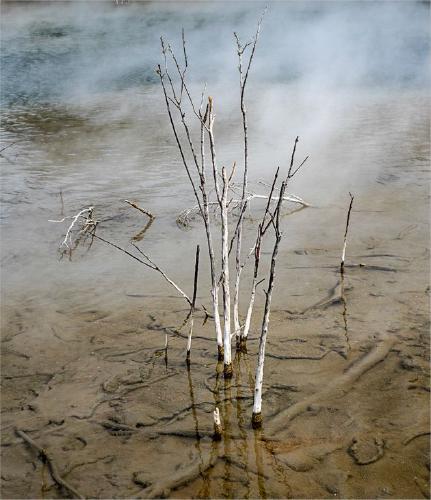 Sulphur Pool Death - Jennifer Brett