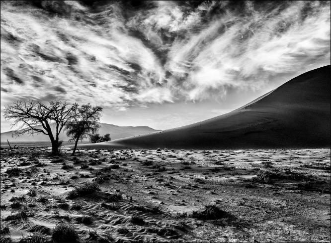 Dune 44 Sossusvlei - Kate Jackson