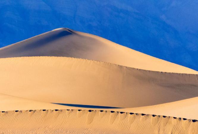 Mesquite Dunes - Kate Jackson