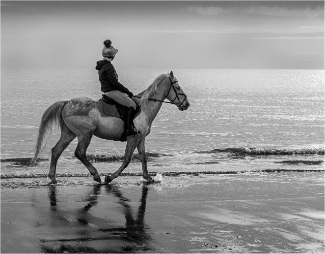 A Gentle Stroll Along the Beach - Martin Leech