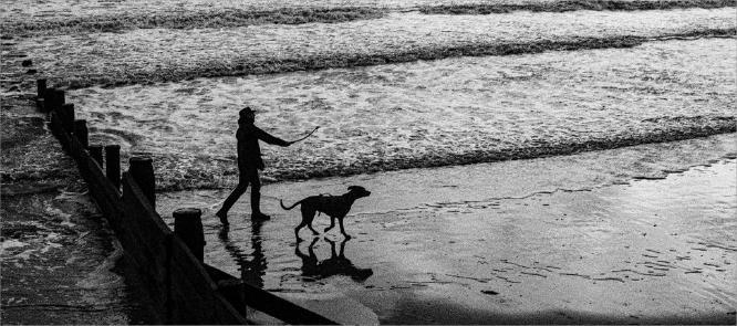 The Dog & Hes Master - Martin Leech