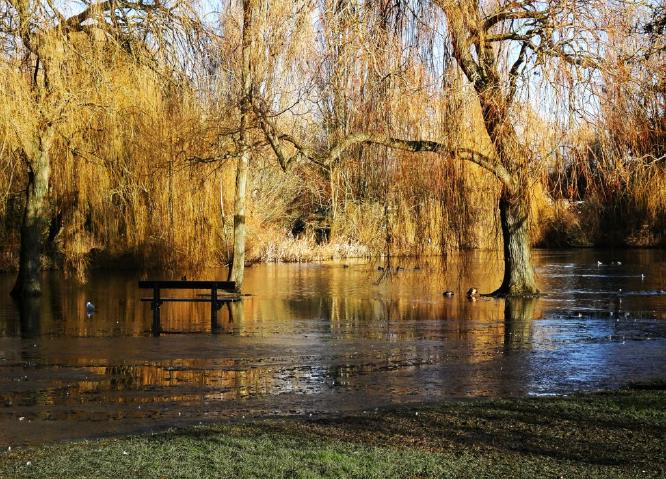 Flooding along the Riverside Walk in Colchester - Steve Robinson