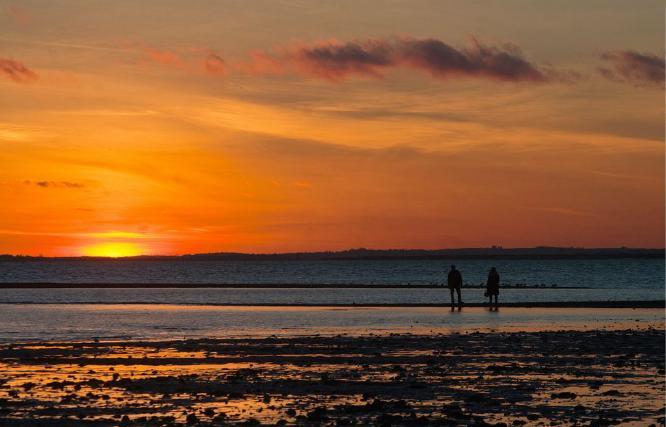 Mersea Island Sunset - Steve Robinson