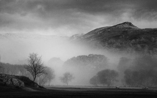 Misty Morning in Ambleside - Steve Robinson