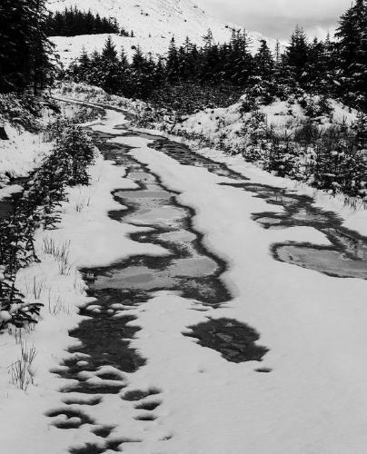 Snow and Ice on the Track - Steve Robinson