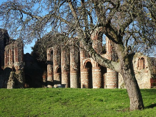 St Botolphs Priory and the Pear Tree - Steve Robinson