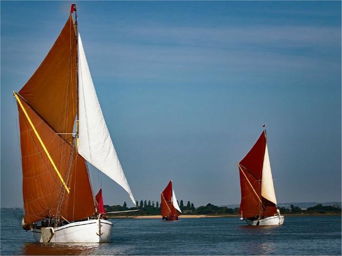 Maldon Barge Race - Terry Stone