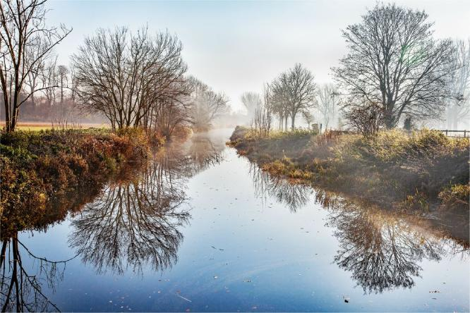Misty Morning Over Beeleigh - Terry Stone